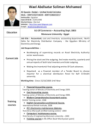Sample Of Making Resume Resume In English Examples Resume For Your Job Application