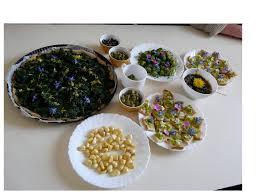 cuisine des plantes sauvages spécialiste des plantes sauvages et de leurs usages formation