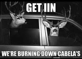 get in funny things to do with your deer taxidermy in pictures