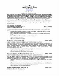 Examples Of Resume Summary Statements 100 Resume Service Resume Newbie Certified Professional