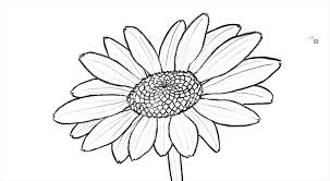 Drawings Of Flowers In A Vase How To Draw A Flower Vase Tags How To Drawa Flower How To Draw A