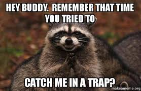 Hey Buddy Meme - hey buddy remember that time you tried to catch me in a trap