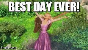 Best Day Ever Meme - a review of my strategy for nanowrimo melissa janda a time to