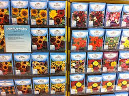 flower seed packets file annual flower seed packets jpg wikimedia commons