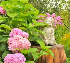 Hydrangea Flowers White Angel Statue On Tree Stump In The Garden With Pink Hydrangea