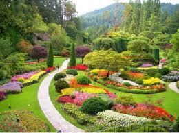 garden extraordinary pictures of flower gardens appealing