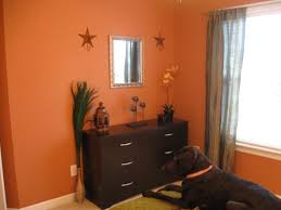 orange spice color pumpkin spice paint living room coma frique studio f075f6d1776b