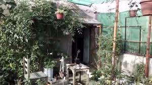 kitchen garden overview garden in home ideas april 2017 urdu