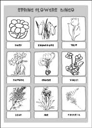 spring flowers vocabulary for kids learning english printable