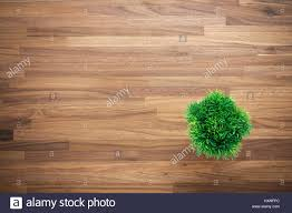 wooden office desk background with artificial green plant stock