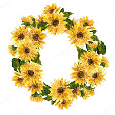 sunflower wreath yellow sunflower wreath stock photo rasveta 81214754