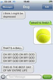 Funny Texting Jokes - what if dogs could text 25 hilarious texts from dogs bored panda