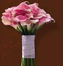 colorful nosegay you promised me a rose garden pinterest