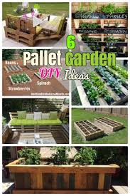 Vertical Succulent Garden Pallet 6 Diy Pallet Garden Ideas And Furniture For Your Small Backyard