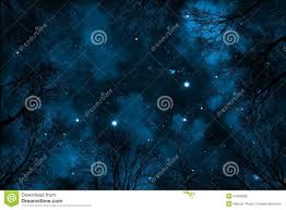 spooky texture spooky low angle view trough trees to starry night sky with blue