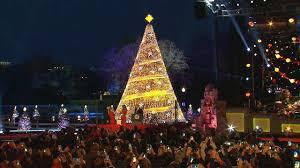 christmas lights tree wrap christmas light tree christmas lights tree wrap outdoor christmas