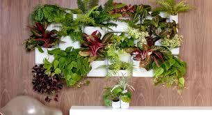 indoor vertical garden apartment crowdbuild for