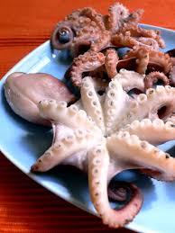 poulpe cuisine les trésors de la mer cuisine grecque