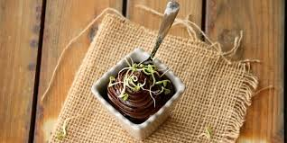 fenugrec cuisine mousse crue avocat cacao caroube aux graines de fenugrec