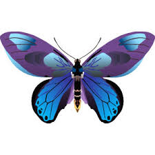 pin clip butterfly on clipart panda free clipart images