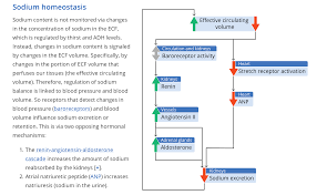 pecop blog read physiology educators u0027 perspectives on
