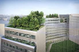 bureau avenue bureaux location offre 70652 cbre