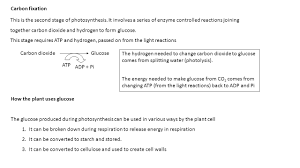 The Light Reactions Of Photosynthesis Use And Produce National 5 Biology Course Notes Unit 1 Cell Biology Part 7