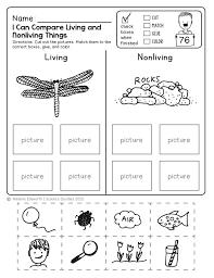science for kindergarten worksheets worksheets