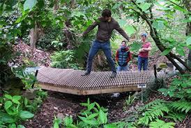 Uc Berkeley Botanical Gardens Students Design And Build New Bridge At Botanical Garden