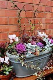 Construire Jardin D Hiver Jardin D U0027hiver En Pot Plantes Ornementales à Privilégier Trucs