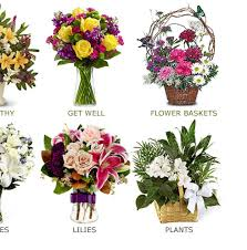 flower delivery colorado springs flower delivery colorado springs flowers florist flower delivery