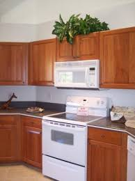 Cheapest Kitchen Cabinet Affordable Kitchen Cabinets To Go St Pete Fl Not Cheap Cabinets