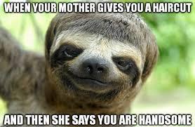 Best Sloth Memes - sloth meme dirty and funny sloth memes