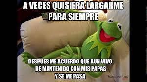 Memes Rana Rene - mejores memes de la rana rene youtube