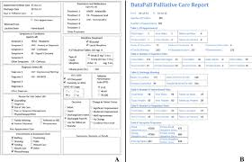 a sample report datapall sample reports a individual medical history patient