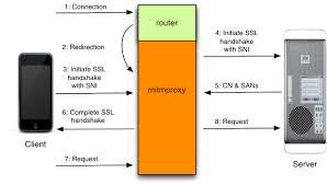 https how how mitmproxy works mitmproxy 2 0 2 documentation