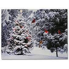 amazon com ohio wholesale radiance lighted merry christmas pick