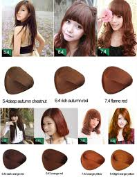 raw hair dye color chart best hair color brands 2017 in pakistan hair color shades of 29