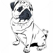 pug stock vectors illustrations and cliparts stockfresh