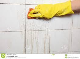 Best Cleaner For Bathroom Bathroom Cool Cleaner For Bathroom Tiles Room Design Plan Modern