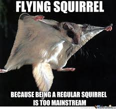 Dramatic Squirrel Meme - flying squirrel by josephmcelrath meme center