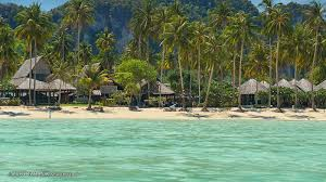 loh bagao in koh phi phi don everything you need to know about
