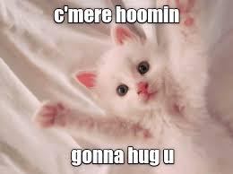 Mere Cat Meme - c mere lolcats lol cat memes funny cats funny cat