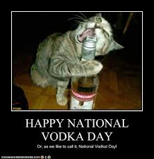 Vodka Meme - i can has cheezburger national vodka day funny animals online