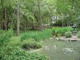 austin texas native plants umlauf sculpture garden u0026 museum event rental austin tx