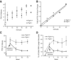 reactivation of lysosomal ca2 efflux rescues abnormal lysosomal