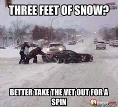 Funny Snow Memes - three feet of snow funny meme pics bajiroo com