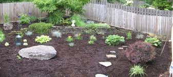 Idea For Backyard Landscaping by Low Maintenance Gardens Ideas On A Budget Back Patio Landscaping