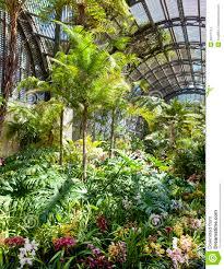 Balboa Park Botanical Gardens by Botanical Building Balboa Park San Diego Editorial Stock Image
