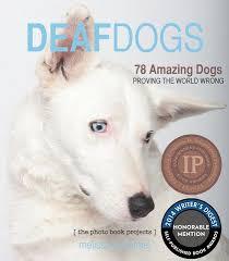 dog coffee table books dog coffee table books dog photos dog prints dog posters dog